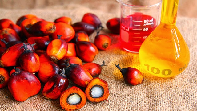 New study confirms palm oil is not harmful