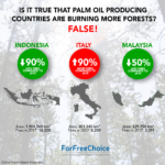 Is it true that palm oil producing countries are burning more forests?