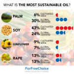 What is the most sustainable oil?
