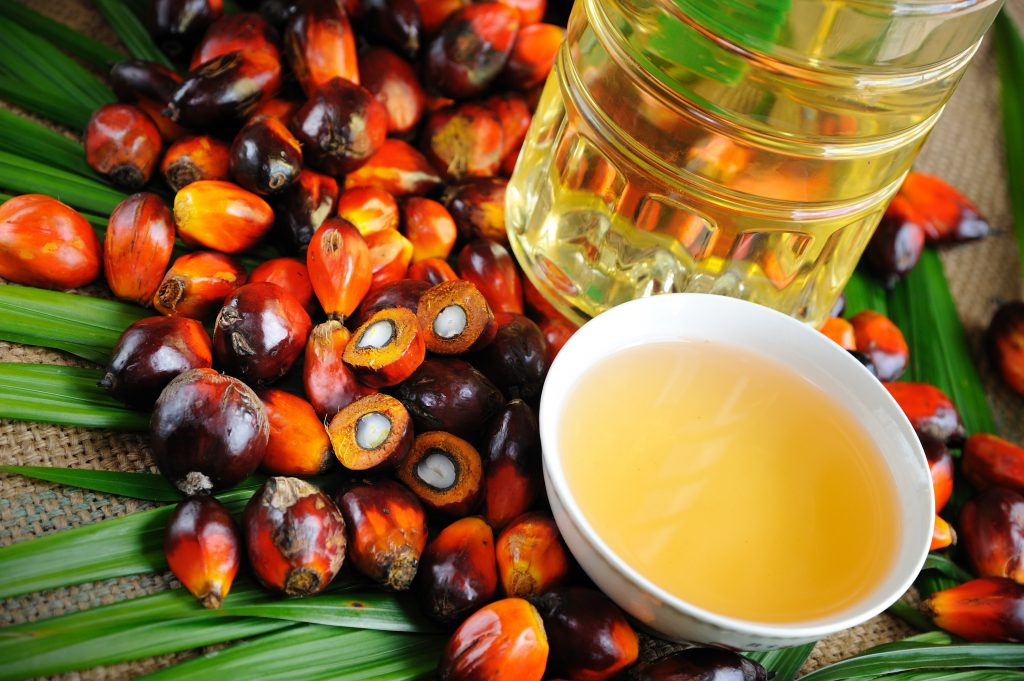 We did it! Italy Signs the Amsterdam Declaration in Support of Sustainable Palm Oil