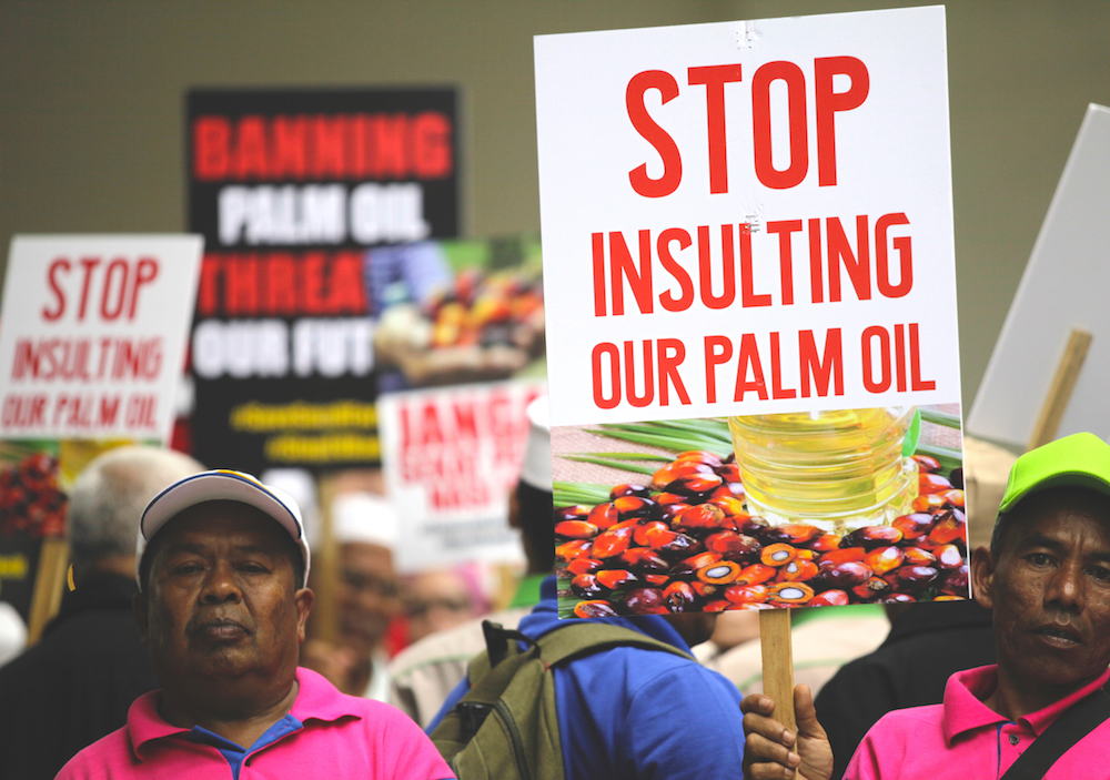 European Stupidity: Banning palm oil will have serious consequences for EU export