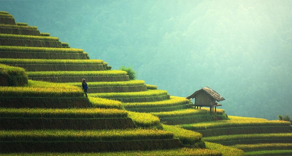 Sustainability: Asia Beats Europe