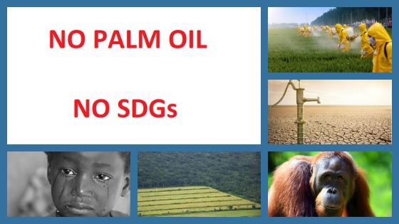 No Palm Oil, No SDGs